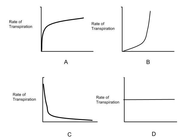 AP Biology - Temperature and Transpiration Graphs